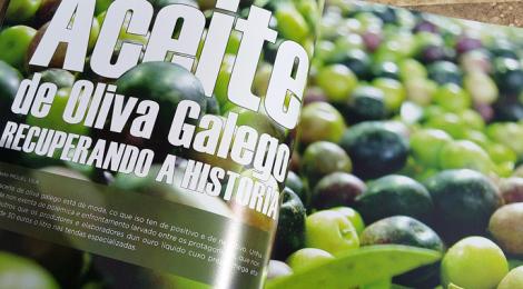 revista-benbo-gastronomia-galicia